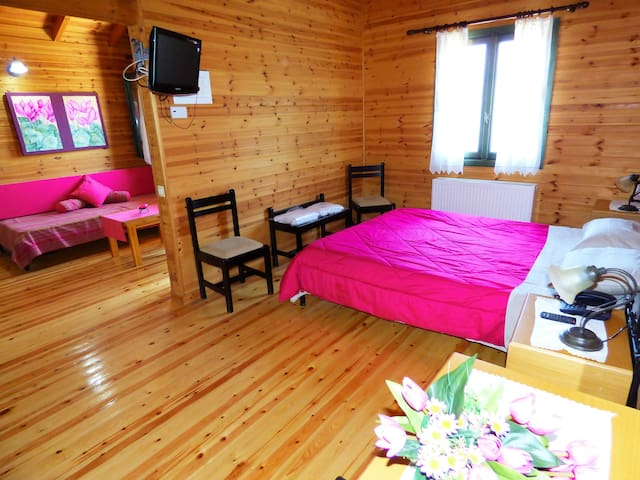 Chalet in the mountain with amazing view - Alagonia - Chalet