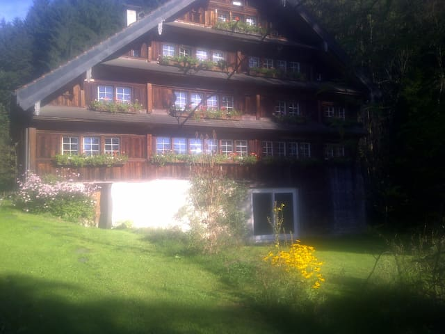Idyllische Ruhe 10min von St.Gallen - Teufen - Hus