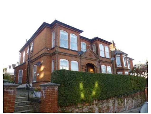 Light comfortable room in a lovely Victorian flat - Aldershot - Daire