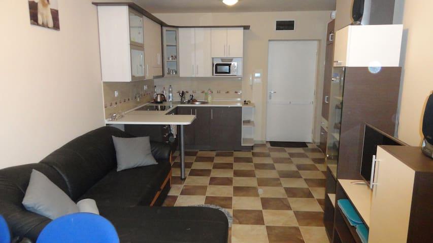 Siófok ezüstparton közvetlen vízparti apartman - Siófok - Departamento