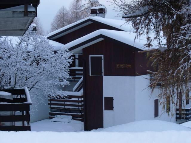 Appartamento immerso nella natura in Nevegal - Belluno - Apartment