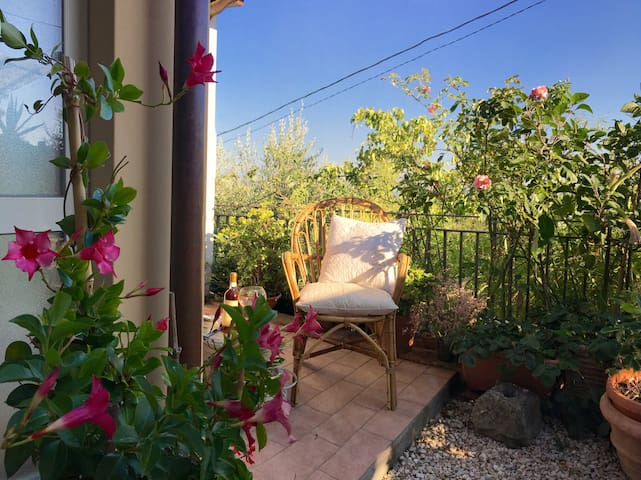 Cozy country house in Tuscany - Aquilea