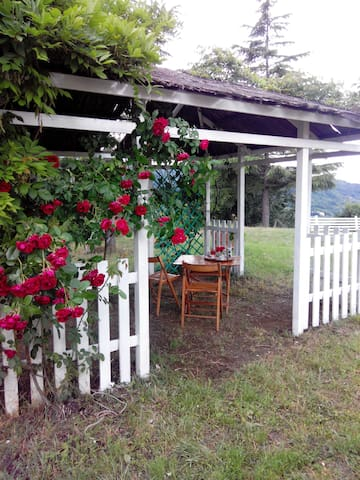 Nature and relax in Tuscany - Vicchio - Apartment