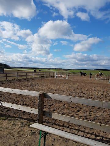 Brandenburg Retreat with Horse Riding - Temnitzquell - Huoneisto