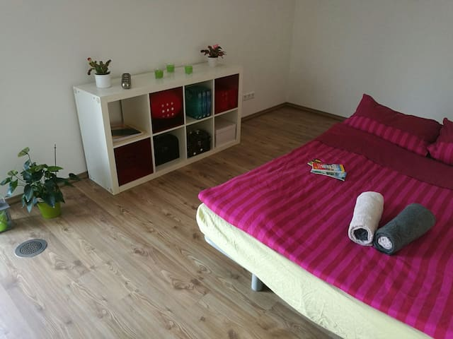 Room with a prime location, 40 sqm terrace - Dresden - Huis