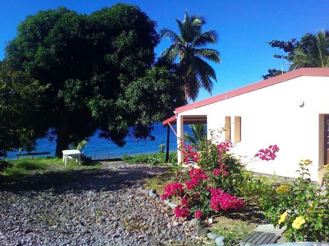 Petit Paradis au bord de l'eau - Saint-Pierre - 獨棟