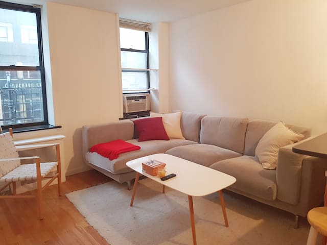Spacious, newly renovated LES 1-bedroom apt! - New York - Apartment