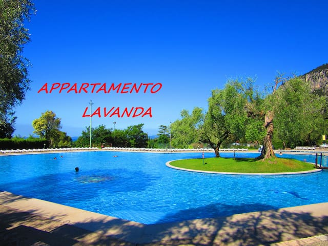 APARTMENT LAVENDER FRONT OF LAKE - Garda - Daire