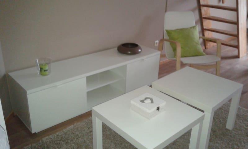 Apartment with 2 studio's ; Tomorrowland 5,5 km - Niel