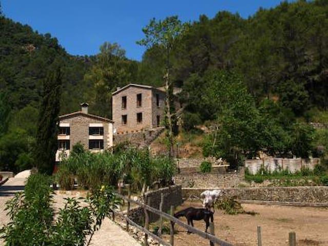 Casa en zona de montaña - puigpunynet - Rumah