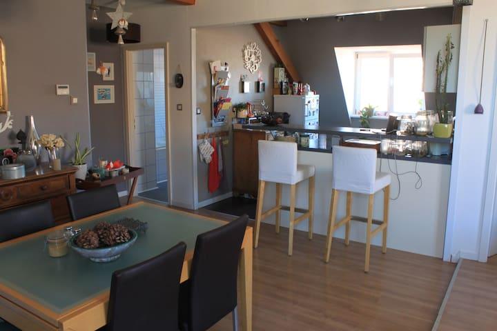 BEL APPARTEMENT TOUT CONFORT AVEC PARKING - Soultz-Haut-Rhin - Appartement