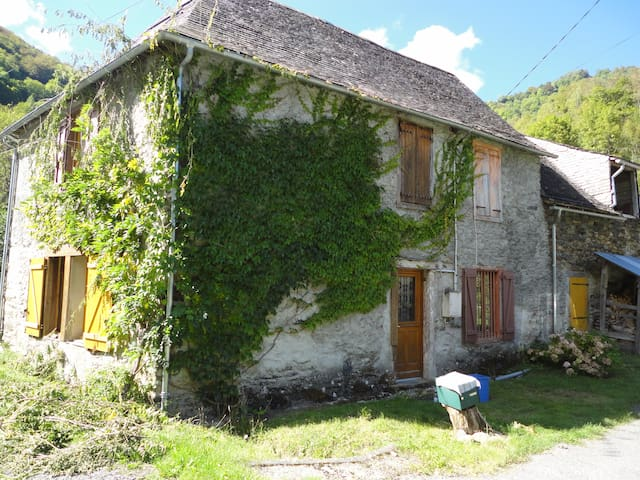 Mountain House with Beautiful Views and Real Fires - Sentein - Huis