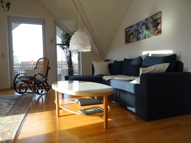 family-friendly apartment - Sinsheim - Appartement