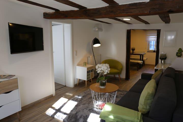 Malerwinkel im historischen Fachwerkhaus - Michelstadt - Apartamento