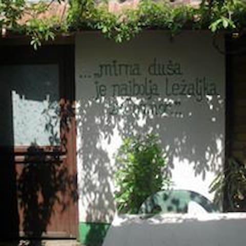Green Apartment Jelena - Vrdnik - Appartement