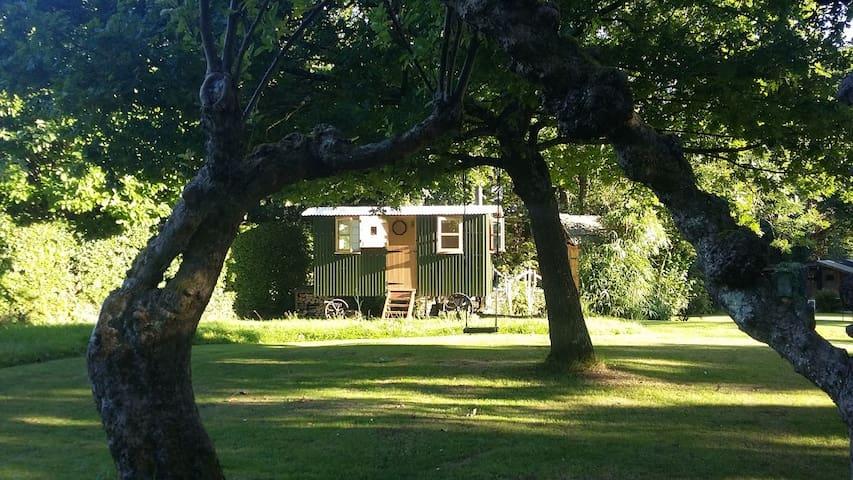 Maggie's Hut, Fittleworth, cosy woodburner & pub! - Fittleworth - Baraka