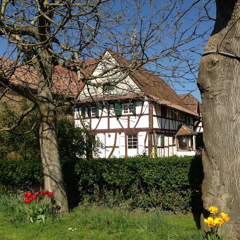 Maison typique + voiture à 2 pas de Strasbourg ! - Vendenheim - Hus