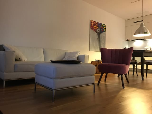 Cozy one bedroom apartment in the heart of Zug - Zug - Apartmen
