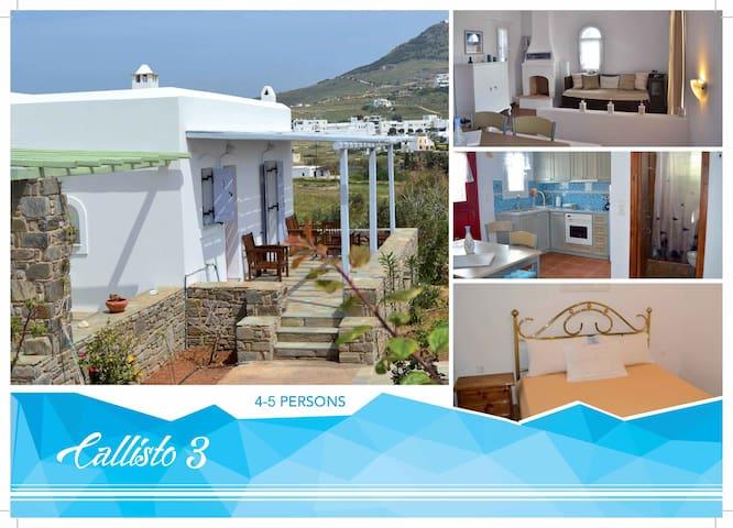 """""""Callisto 3"""" House in Paros island - Marpissa - Hus"""
