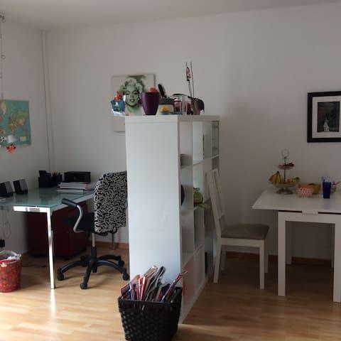 Cozy studio apt. in city center! - Frankfurt am Main - Apartemen