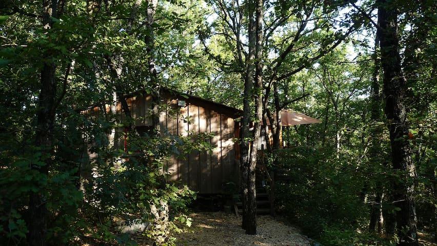Le chalet dans les bois - Rochegude - Casa