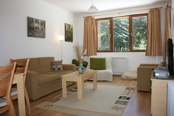 A comfortable one bedroom apartment with Wi-fi. - Borovets - Appartement