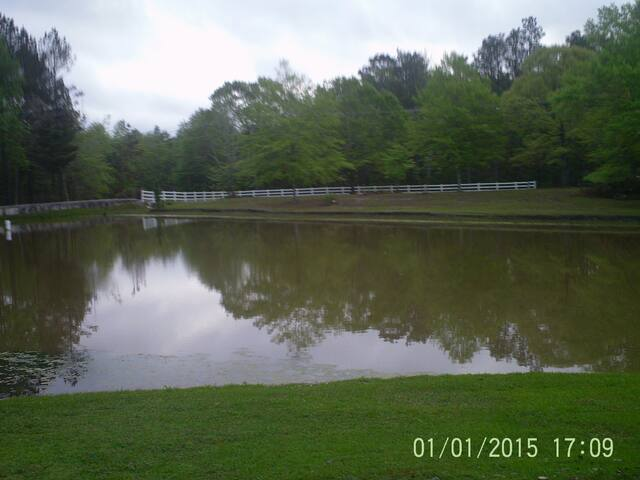 GREAT APARTMENT-COUNTRY SETTING-CLOSE TO USM!! - Hattiesburg - Leilighet