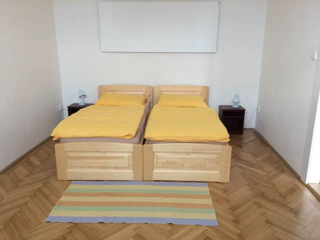 Cosy quiet flat in Pilsen center - Plzeň - Apartament