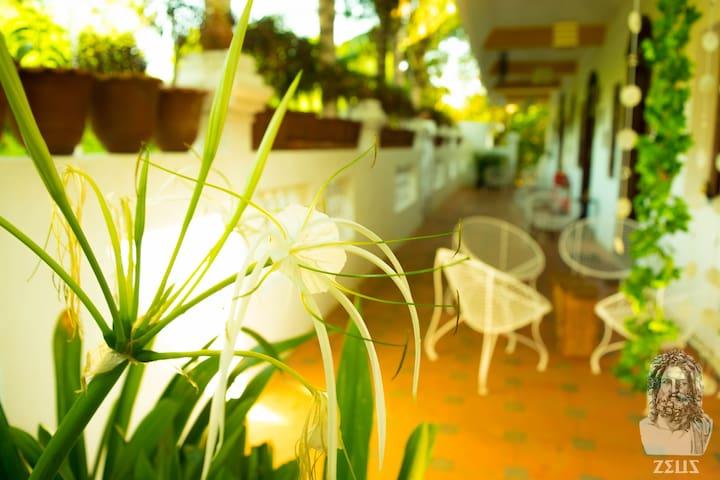 Eden of Zen - Ambar (Sky) Twin Bed (SUMMER OFFER!) - Auroville - Appartement