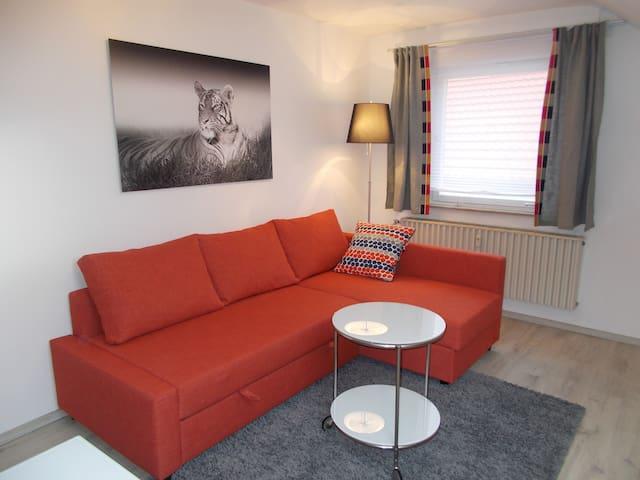 Apartment Seven Ducks - Aalen - Lägenhet