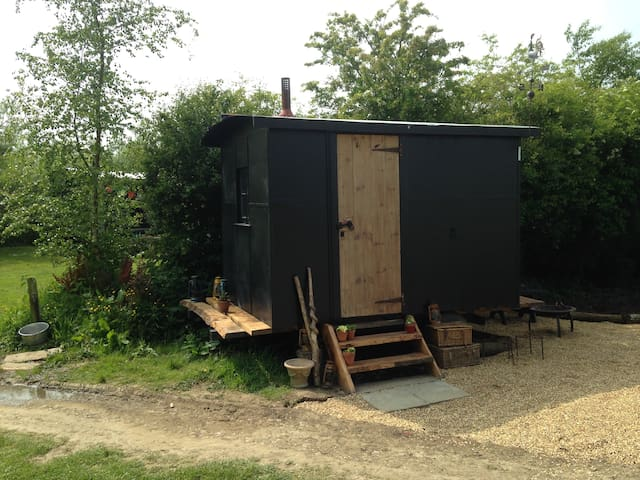 Shepherds Hut w/burner near to sea - Whitchurch Canonicorum - Stråhytte