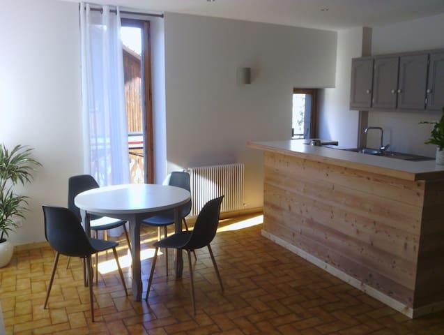 Agréable petit appartement au coeur du village - Morzine - Leilighet