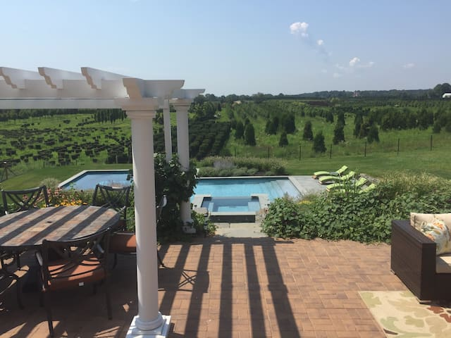 Stunning views in wine country - Cutchogue - Ev