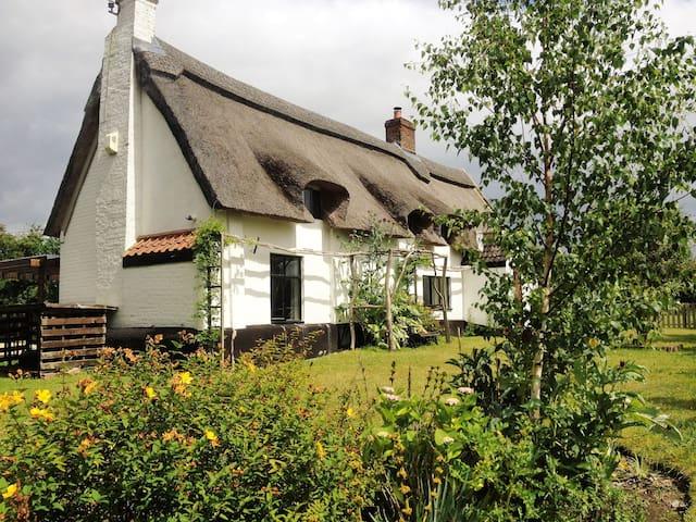 Broad Cottage  - Norfolk Broads - Hoveton - Huis