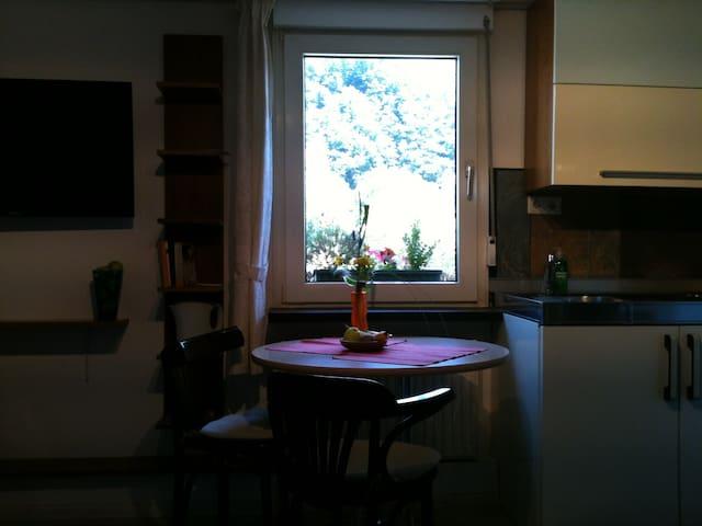 Helle Wohnung mit altem Fachwerk - Dernau - Departamento