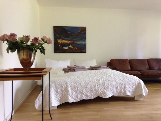 Nice, modern flat with patio - Dießen am Ammersee - Appartement