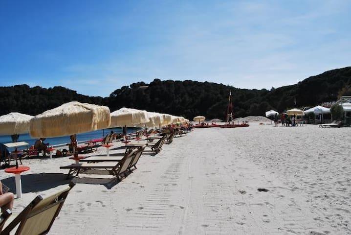 Island Elba Tuscany Fetovaia Bay - Fetovaia - Casa
