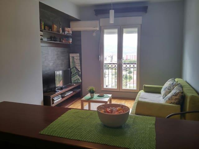 Lovely studio in central Podgorica - Podgorica - Daire