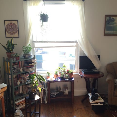 cute and cozy 1 bedroom apartment - Syracuse - Daire