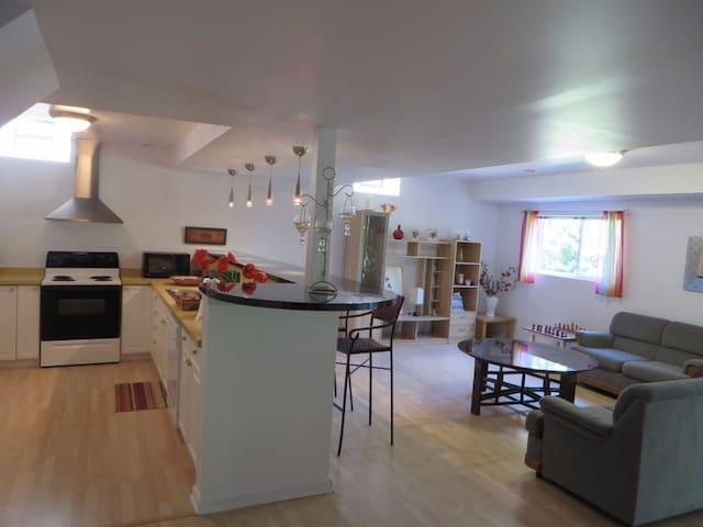 Spacious Private Suite - Ann Arbor - Huis