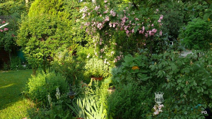 Fabulously Green Living - Melsungen - Departamento