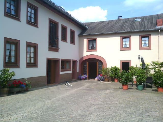 Bauernhof-Ferienwohnung - Neidenbach - Leilighet