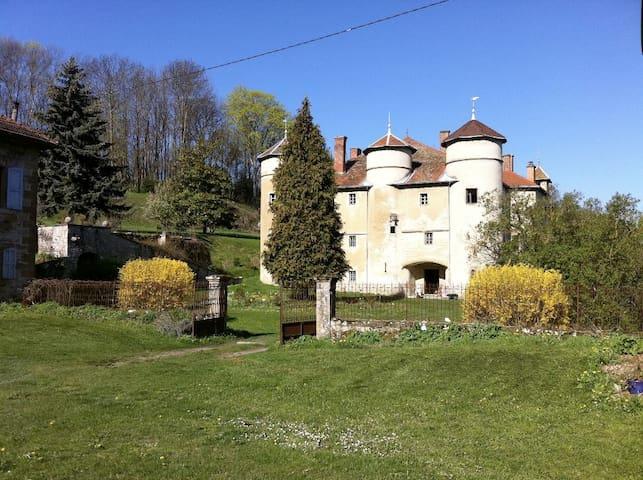 Château de Montfort - Eyzin-Pinet - Slott
