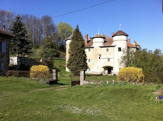 Château de Montfort - Eyzin-Pinet