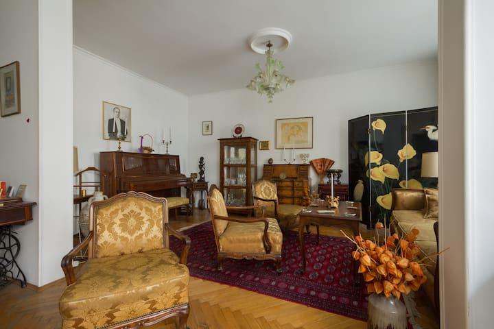 Enjoyable room at the city center - Belgrade