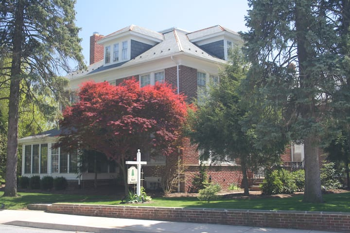 Cozy and Inviting Bed & Breakfast - Red Lion - Bed & Breakfast