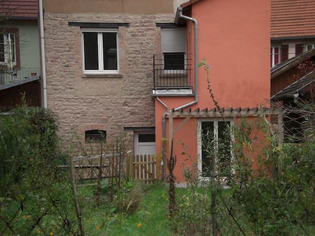 GRAND GÎTE LUMINEUX AVEC VUE SUPERBE - Lutzelbourg - Lägenhet