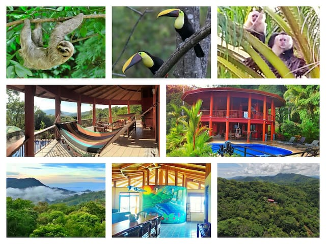 Nature lover's paradise! - Dominical - Villa