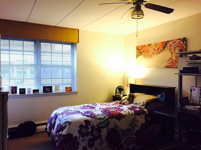 Peaceful Suburban Square Apartment - Ardmore