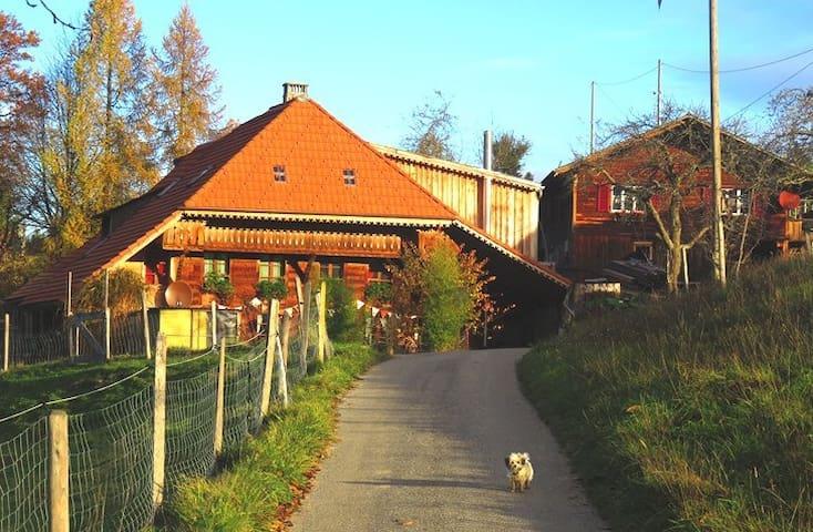 Ferienwohnung Tierhof Mühleweg - Walterswil - 公寓